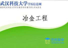 武汉科技大学成教专升本【冶金工程】头像