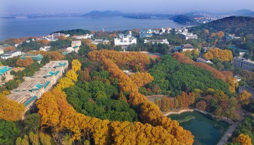 2013年武汉大学1月自考专升(套)本报名时间
