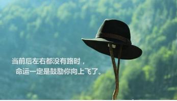 image (50).jpg