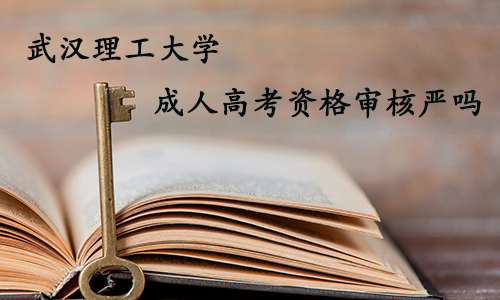 武汉理工大学成人高考资格审核严吗